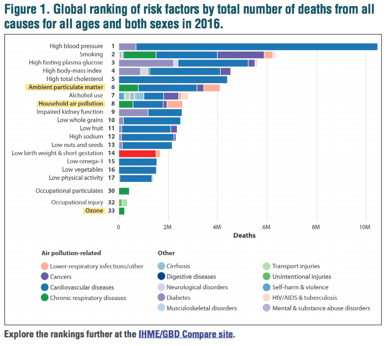 Figure 1: Total ranking of risk factors by total number of deaths from all causes for all ages and both sexes in 2016.